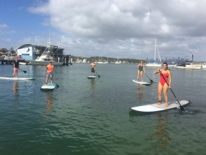 stand up paddle cruise