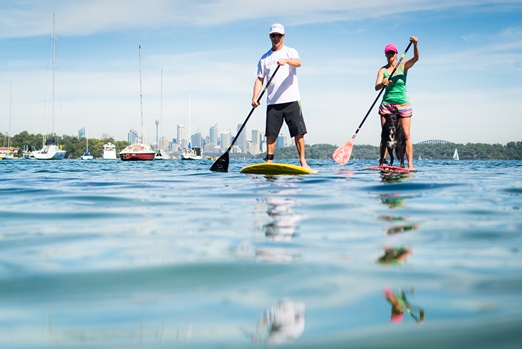 paddle at sydney harbour